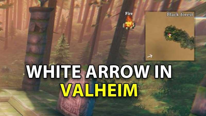 white-arrow-valheim