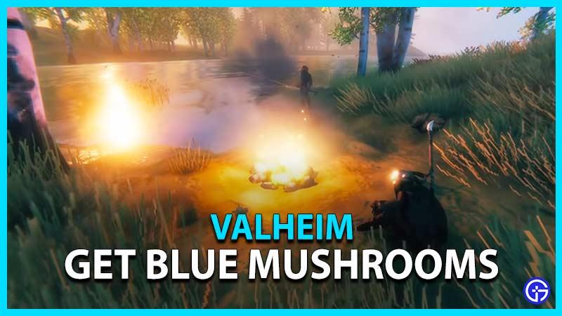 seta azul valheim