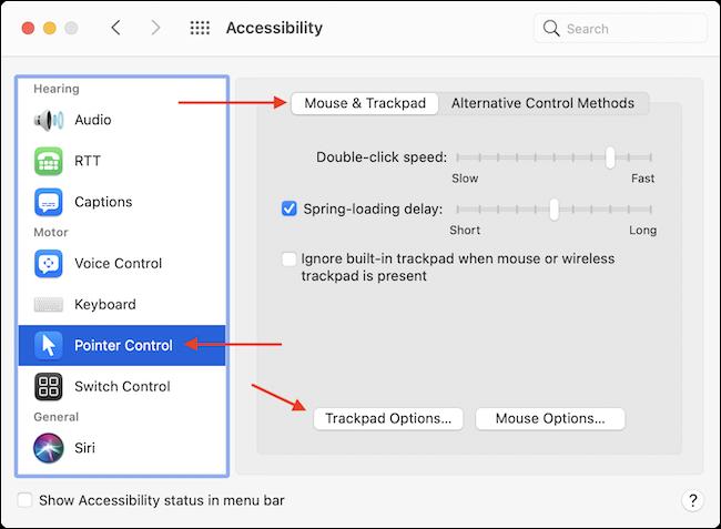 Vaya a Opciones de trackpad en Accesibilidad