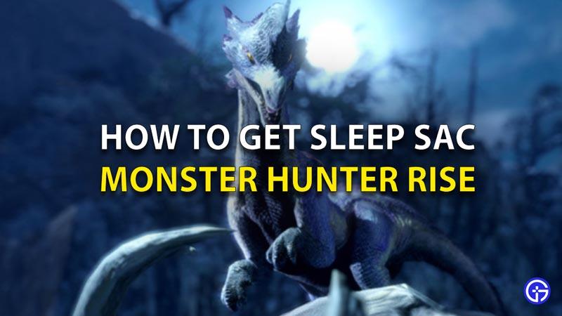 Cómo conseguir el saco de dormir en Monster Hunter Rise
