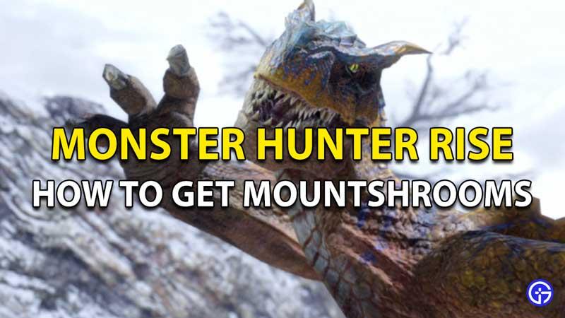 Monstruo de Monster Hunter Rise