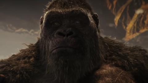 Godzilla vs.  Kong establece un nuevo récord de HBO Max para la mayoría de las vistas en los primeros cuatro días