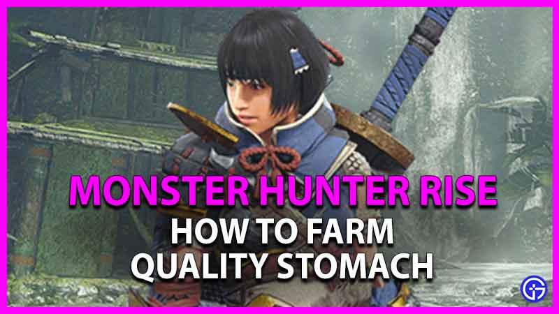 Cómo cultivar un estómago de calidad en Monster Hunter Rise