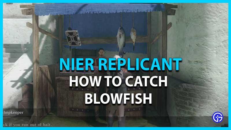 Cómo atrapar pez globo en el replicante de Nier