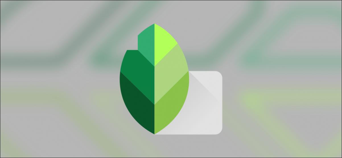 logotipo de snapseed