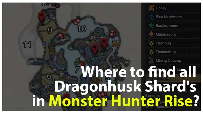 Ubicación de fragmentos de dragón MHR
