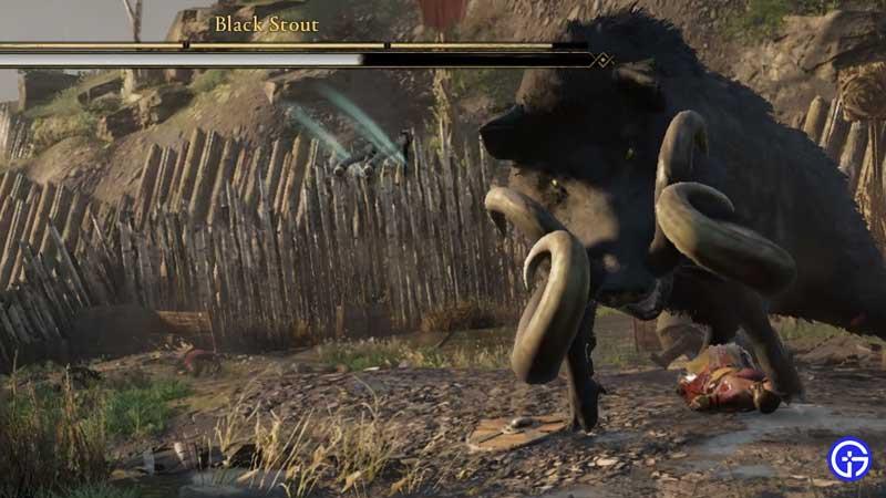 negra y fuerte ira de los druidas
