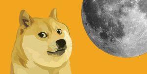 dogecoin crypto altcoin pump dump dogeusd dogebtc tiktok