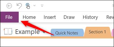 Ficha archivo en Microsoft OneNote