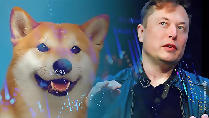 Elon Musk Rallies Support for Dogecoin Fee Change