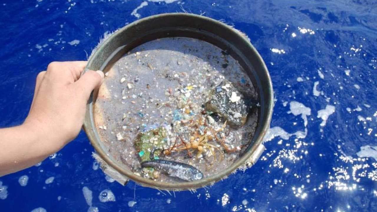 Cada año, alrededor de ocho millones de toneladas de desechos plásticos ingresan al océano.  Crédito de la imagen: NASA.