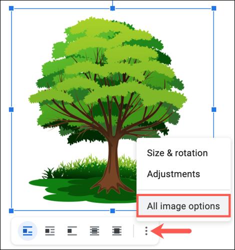 Haga clic en los tres puntos y elija Todas las opciones de imagen