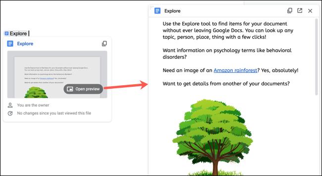 Vista previa de un documento en Google Docs