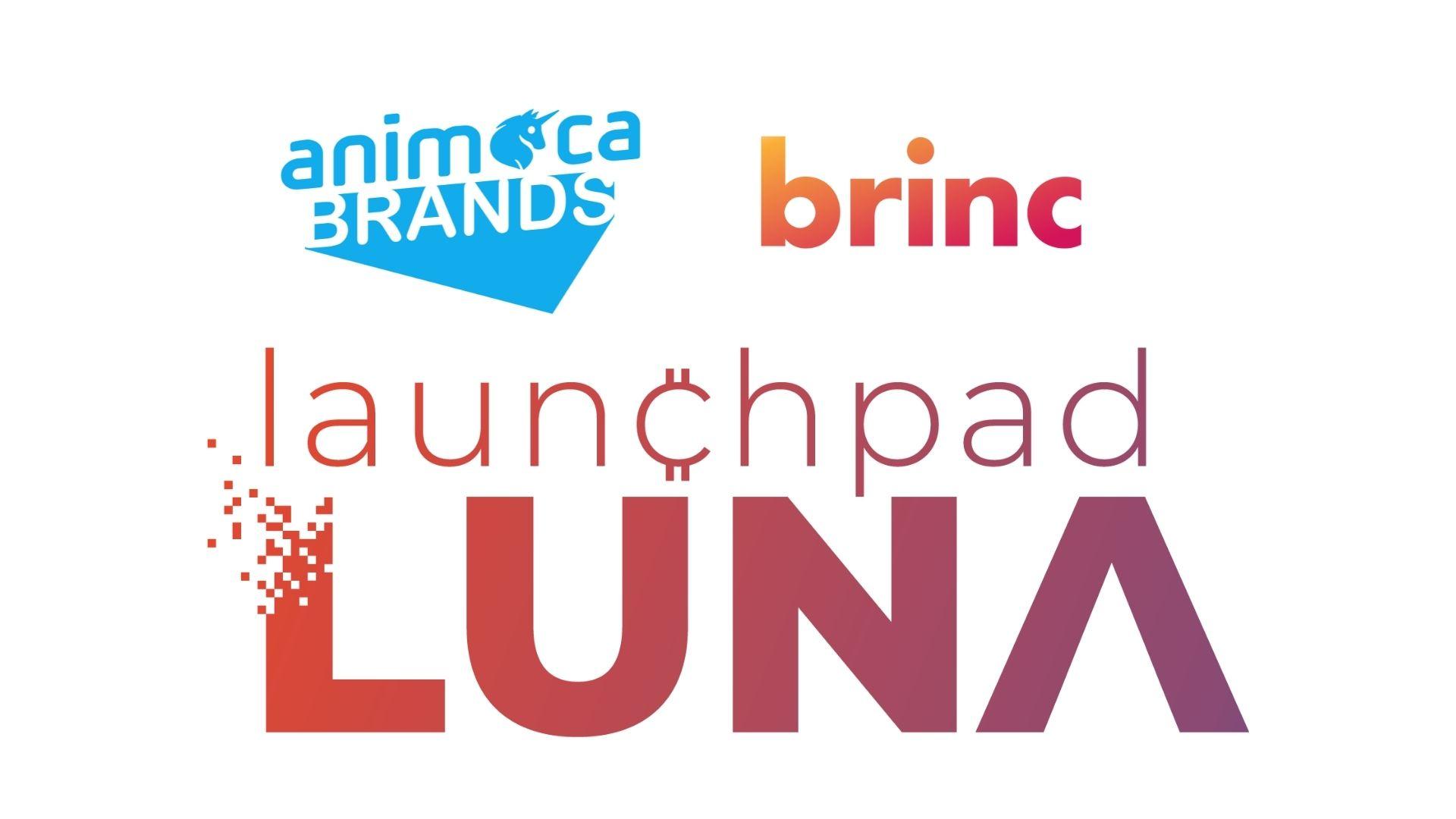 Blockchain Gaming Unicorn Animoca Brands, Brinc lanzan NFT Accelerator
