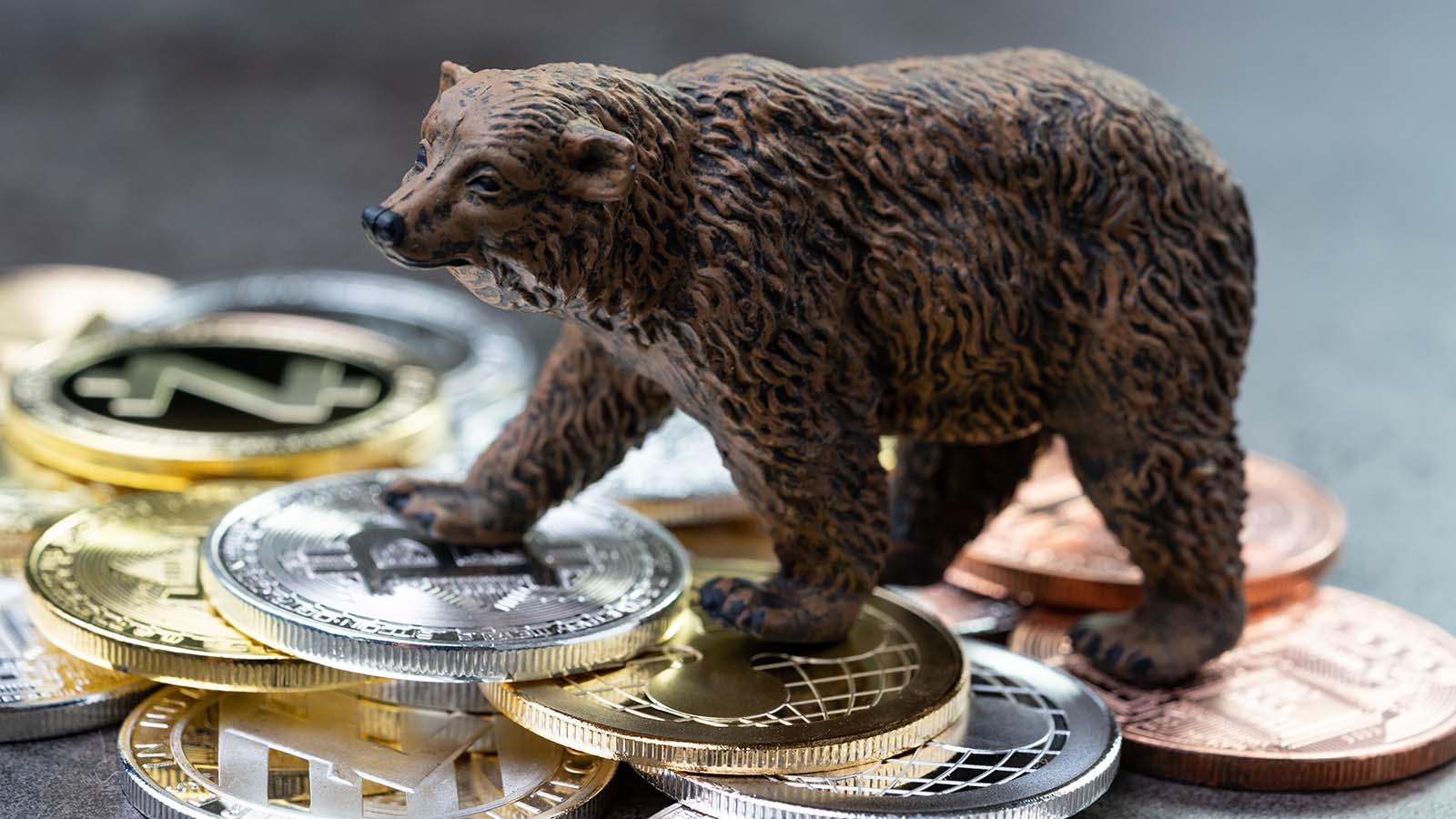 cryptos - 7 Cryptos on Watch as Digital Assets Take a Breather