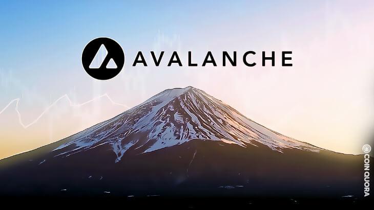 Avalanche Testnet Fuji is Going Slowly Parabolic