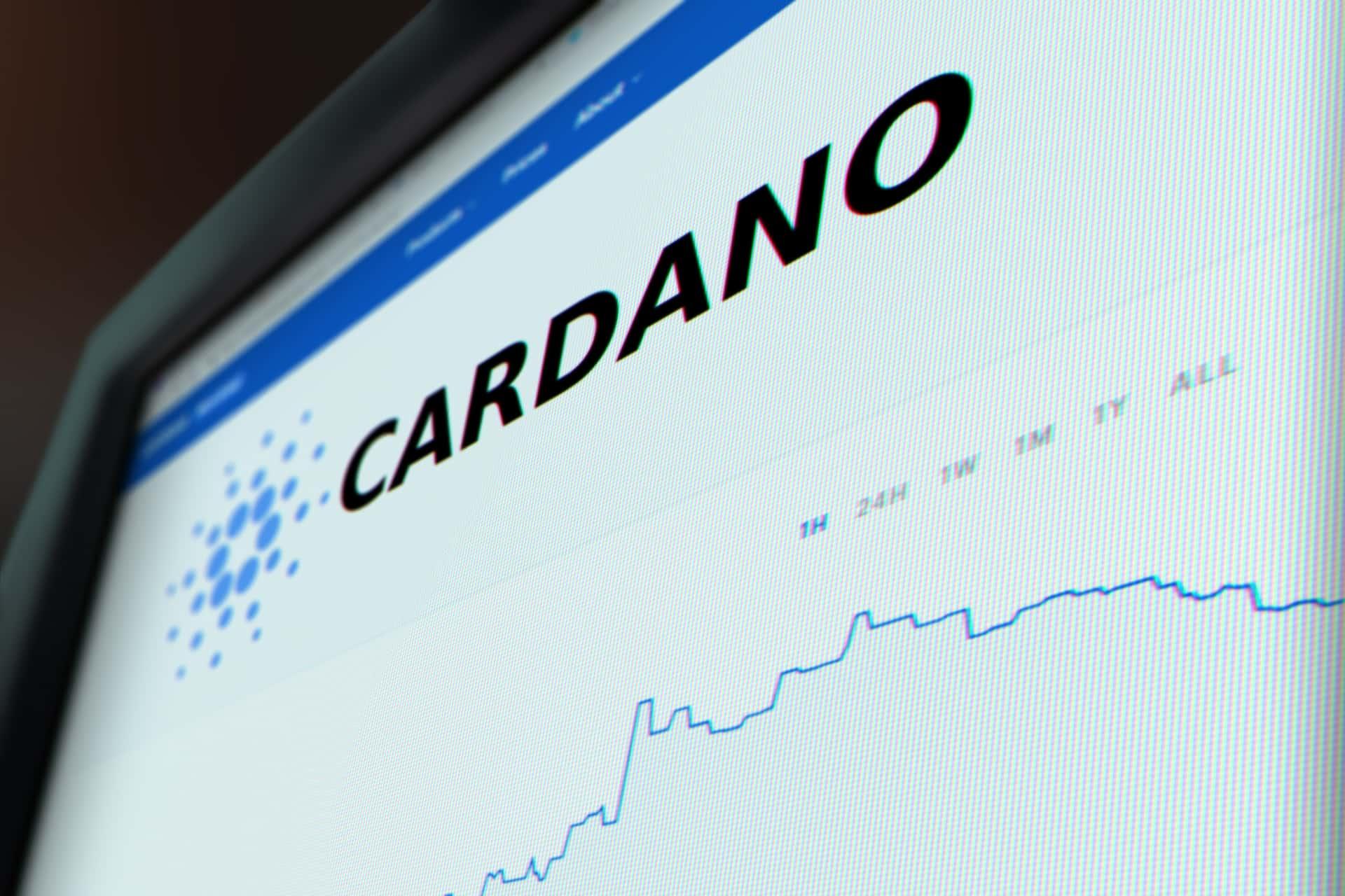 Cardano hits new high price