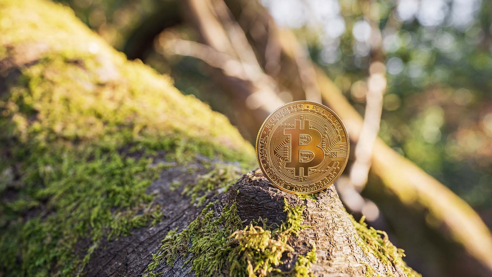 Bitcoin - Why Bitcoin Could Soar to $100,000